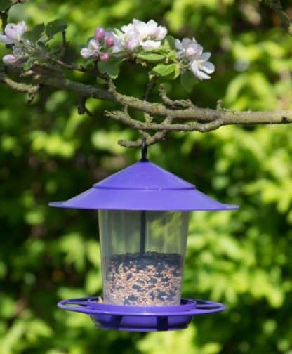 Etree Blue Hanging Bird Feeder