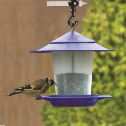Etree Purple Hanging Lantern Bird Feeder