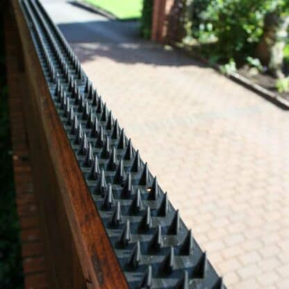 Grey Fence Guard security spikes on a wooden fence