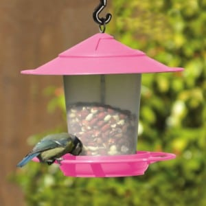 Lantern Bird Feeder by eTree