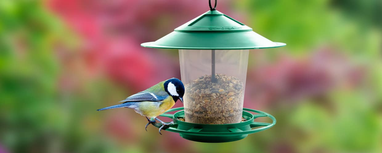 Purple Hanging Lantern Bird Feeder