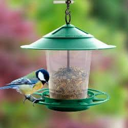 Etree Hanging Bird Feeder